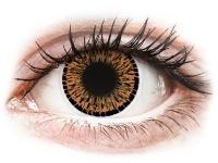 alensa.gr - Φακοί επαφής - ColourVUE Elegance Brown - Μη διοπτρικοί