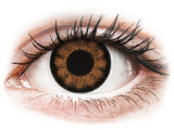alensa.gr - Φακοί επαφής - ColourVUE BigEyes Sexy Brown - Μη διοπτρικοί